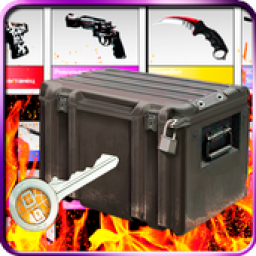 Logo Case simulator CS: GO with real things