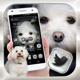 Logo Cute Puppy Launcher Theme